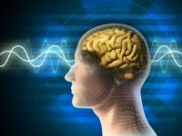 De Heinrich Rudolf Hertz al cáncer de cerebro